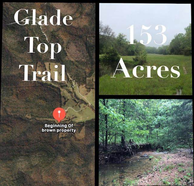 153 Acres Glade Top Trail, Ava, MO 65608 (MLS #60163864) :: Weichert, REALTORS - Good Life