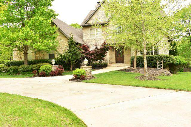 257 Meadow Lane, Branson, MO 65616 (MLS #60164263) :: Clay & Clay Real Estate Team