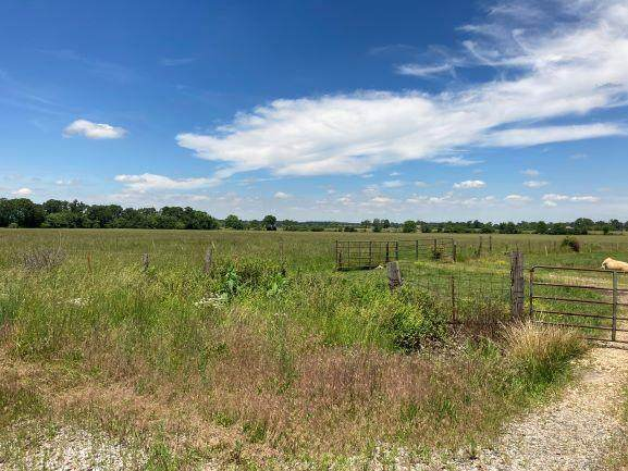 000 Hwy 60, Rogersville, MO 65742 (MLS #60165129) :: Sue Carter Real Estate Group