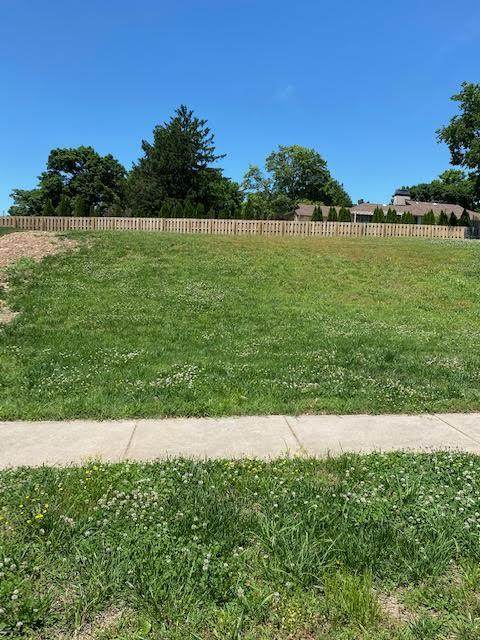 3819 E Rosebriar Street, Springfield, MO 65809 (MLS #60165919) :: Sue Carter Real Estate Group
