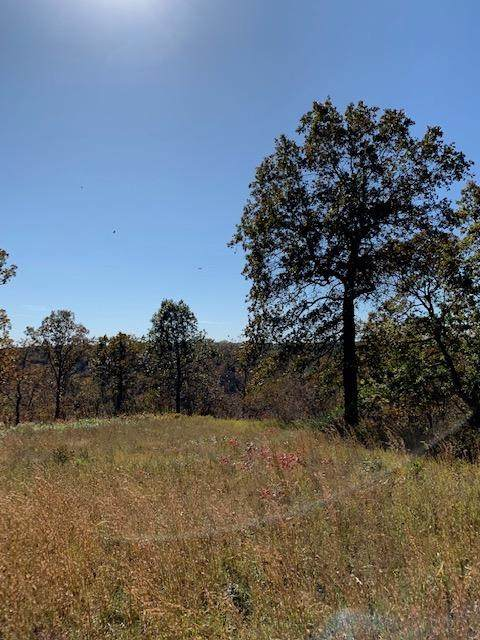 000 Buckskin Ridge Road, Highlandville, MO 65669 (MLS #60166798) :: Weichert, REALTORS - Good Life