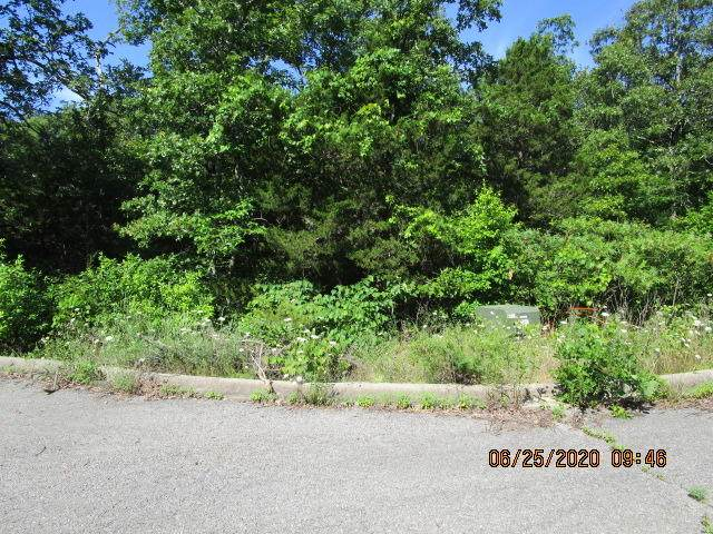 Lot 182 Ladybug Circle, Hollister, MO 65672 (MLS #60166846) :: Clay & Clay Real Estate Team