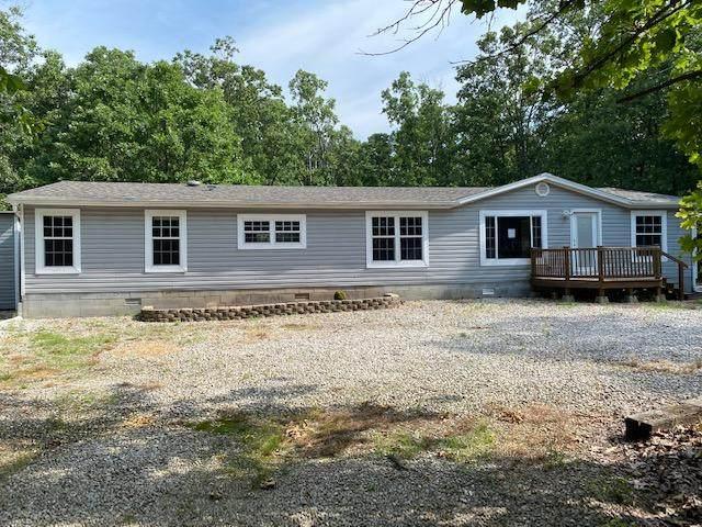 356 Sugar Tree Drive, Fordland, MO 65652 (MLS #60167552) :: Sue Carter Real Estate Group