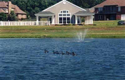 Lots 35-36 N Gregory Drive, Nixa, MO 65714 (MLS #60167800) :: The Real Estate Riders