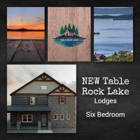 Tbd David Shawn Drive, Indian Point, MO 65616 (MLS #60170126) :: The Real Estate Riders