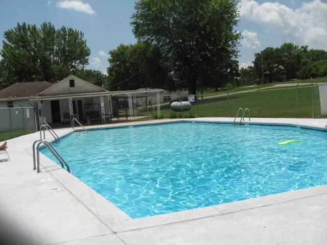 Lot 31 Duck Drive, Golden, MO 65658 (MLS #60170497) :: Winans - Lee Team   Keller Williams Tri-Lakes