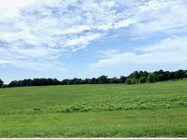 1888 Highway 215, Brighton, MO 65617 (MLS #60170861) :: Team Real Estate - Springfield
