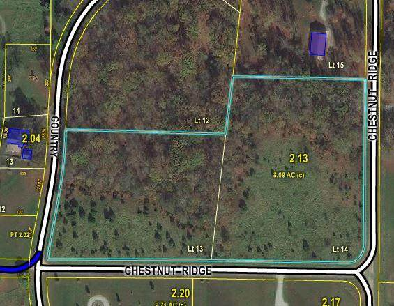 000 Chestnut Ridge Road, Houston, MO 65483 (MLS #60171264) :: Weichert, REALTORS - Good Life
