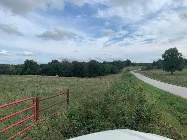 State Hwy Mm, Ash Grove, MO 65604 (MLS #60172841) :: Sue Carter Real Estate Group