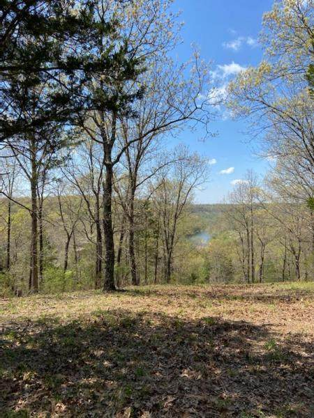 0 Regal Heights Lane Lot 45, Galena, MO 65656 (MLS #60174993) :: Weichert, REALTORS - Good Life
