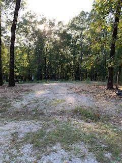 Tbd Lot 12 Blk 35 Red Bud Lane, Ridgedale, MO 65739 (MLS #60176056) :: Sue Carter Real Estate Group