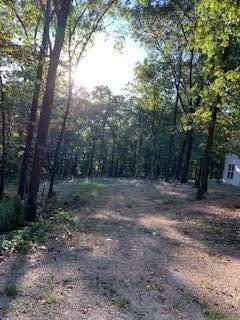 Tbd Lot 10 Blk 35 Red Bud Lane, Ridgedale, MO 65739 (MLS #60176062) :: Sue Carter Real Estate Group