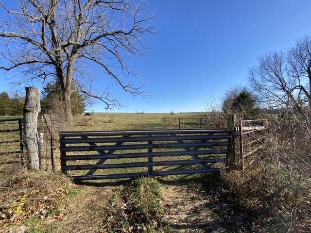 000 W Farm Rd 36, Walnut Grove, MO 65770 (MLS #60179210) :: Sue Carter Real Estate Group