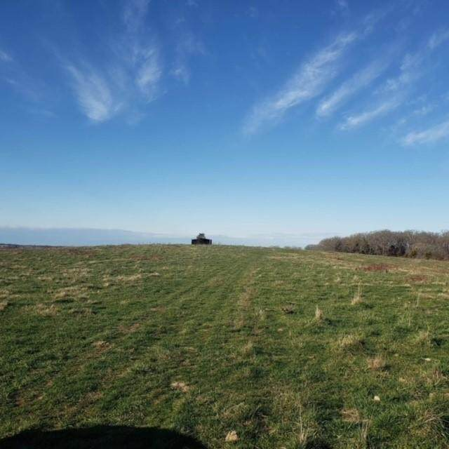 643 Highway O, Highlandville, MO 65669 (MLS #60179309) :: The Real Estate Riders