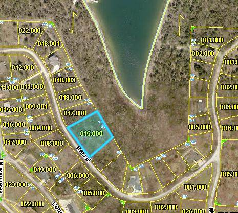 Tbd Hallie Drive, Blue Eye, MO 65611 (MLS #60179467) :: Winans - Lee Team   Keller Williams Tri-Lakes