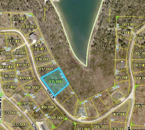 Tbd Hallie Drive, Blue Eye, MO 65611 (MLS #60179469) :: Winans - Lee Team   Keller Williams Tri-Lakes