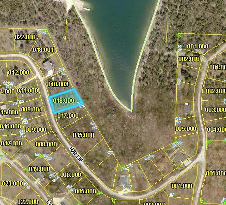 Lot 112 Wood Ridge Estates, Blue Eye, MO 65611 (MLS #60179470) :: Winans - Lee Team | Keller Williams Tri-Lakes