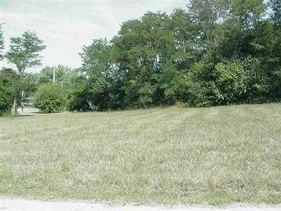 0-Parcel B Gibbs, Mt Vernon, MO 65712 (MLS #60180489) :: The Real Estate Riders