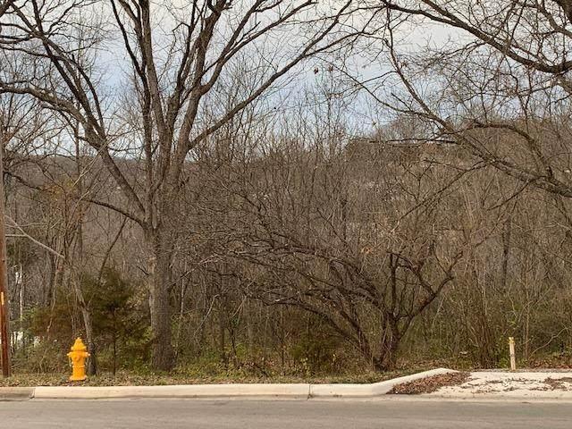355 Evergreen Street, Hollister, MO 65672 (MLS #60180492) :: Team Real Estate - Springfield