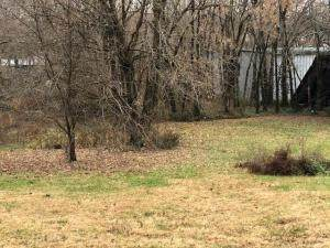 000 Old Cane Bluff Road, Alton, MO 65606 (MLS #60180720) :: United Country Real Estate
