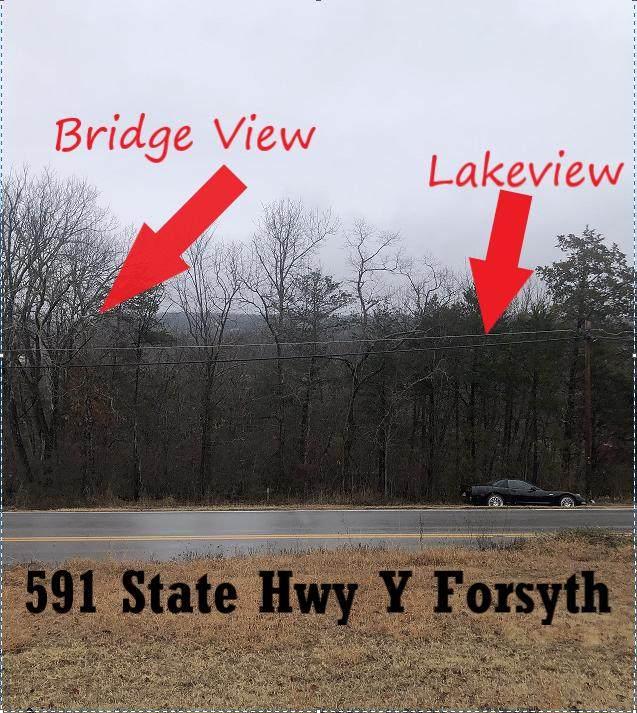 591 State Highway Y, Forsyth, MO 65653 (MLS #60180750) :: Winans - Lee Team | Keller Williams Tri-Lakes