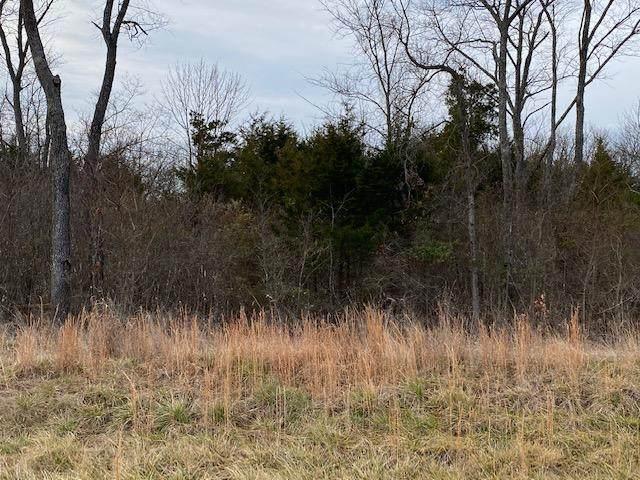 Lot 2 Harp Lane, Kirbyville, MO 65679 (MLS #60180923) :: United Country Real Estate