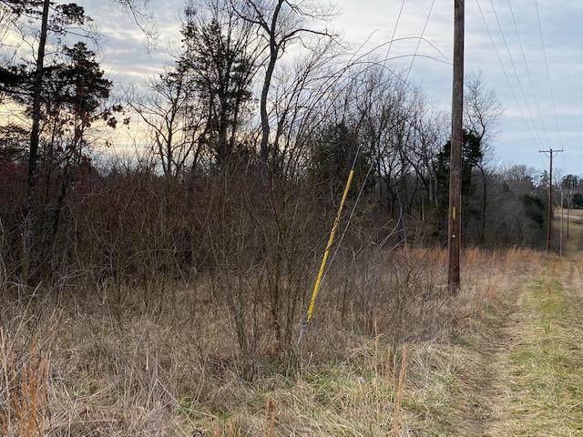 Lot 3 Harp Lane, Kirbyville, MO 65679 (MLS #60180924) :: United Country Real Estate