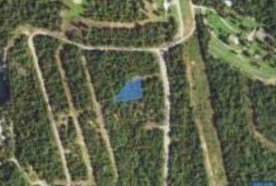000 Ludlow Lane, Mountain Home, AR 72653 (MLS #60181052) :: Evan's Group LLC