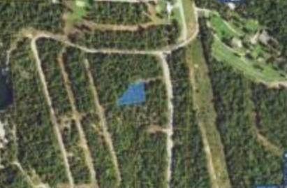 000 Ludlow Lane, Mountain Home, AR 72653 (MLS #60181057) :: Evan's Group LLC