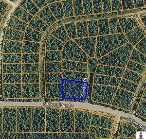 1403 Senate Point, Horseshoe Bend, AR 72512 (MLS #60181060) :: Team Real Estate - Springfield