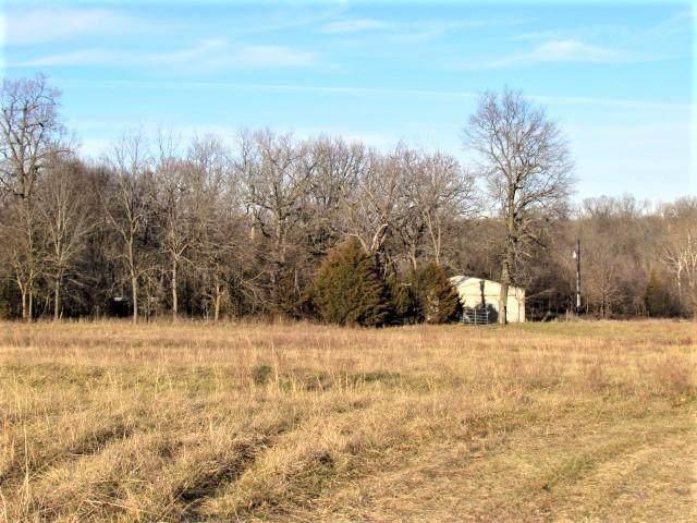 1303 Patterson Branch Road, Elkland, MO 65644 (MLS #60181122) :: Evan's Group LLC