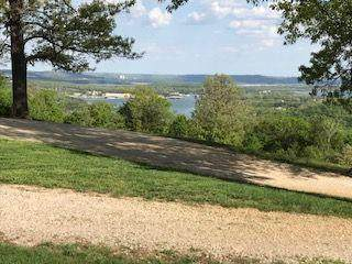 Lot 1 Chateau Lane, Branson West, MO 65737 (MLS #60181677) :: Team Real Estate - Springfield