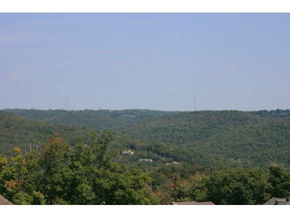 Lot 35 Whitetail Drive, Walnut Shade, MO 65771 (MLS #60181819) :: Clay & Clay Real Estate Team