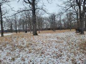 20330 S C, Jerico Springs, MO 64756 (MLS #60183386) :: United Country Real Estate