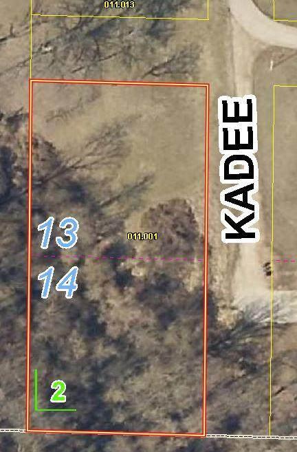 Lots 13&14 Kadee Drive, Crane, MO 65633 (MLS #60183492) :: Clay & Clay Real Estate Team