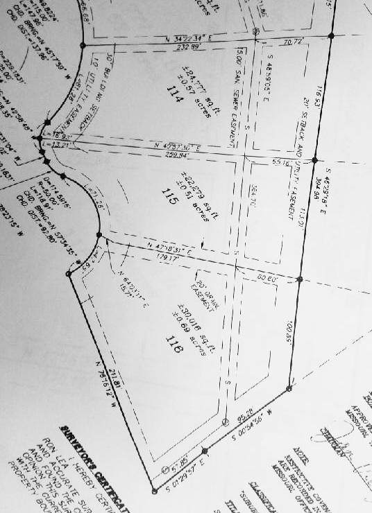 000 Eagles Nest Lots 114-116, Rogersville, MO 65742 (MLS #60183985) :: Sue Carter Real Estate Group