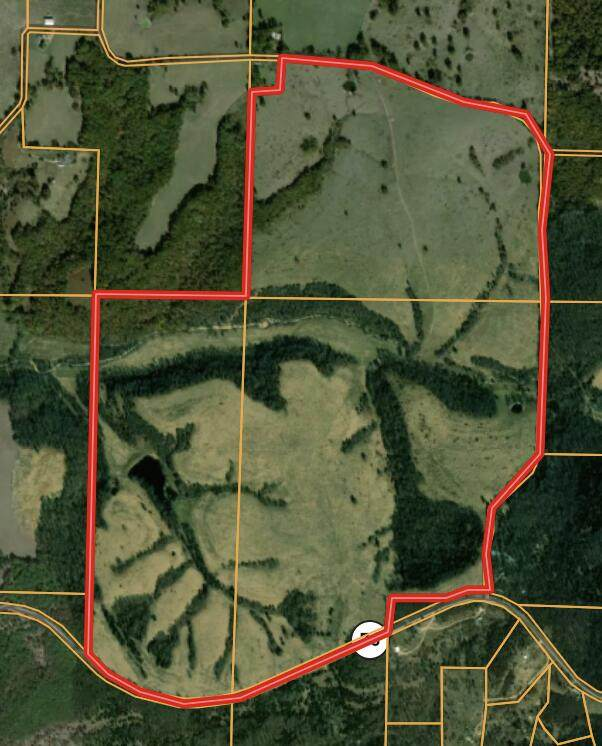 000 Highway 76, Mountain Grove, MO 65711 (MLS #60184109) :: Winans - Lee Team | Keller Williams Tri-Lakes