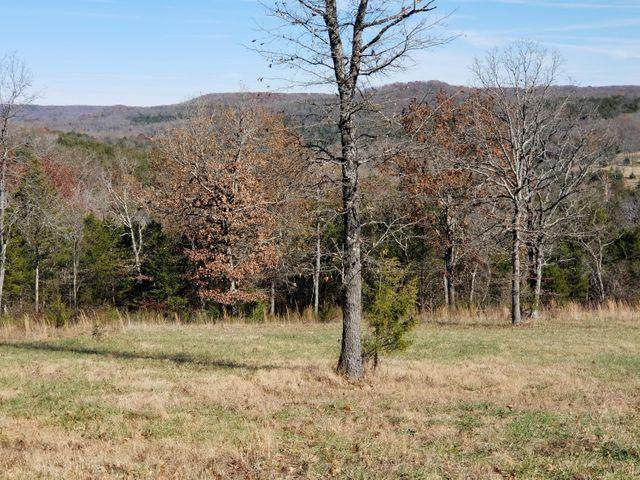 Lot 90 Forest Heights, Saddlebrooke, MO 65630 (MLS #60184525) :: Team Real Estate - Springfield