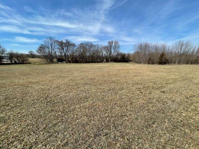 000 Lot 3 Cottonwood Addt South, Fair Grove, MO 65648 (MLS #60185073) :: Team Real Estate - Springfield