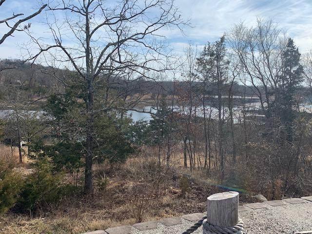 Lot 1 Cedar Landing Subdivision, Branson, MO 65616 (MLS #60185387) :: Winans - Lee Team | Keller Williams Tri-Lakes