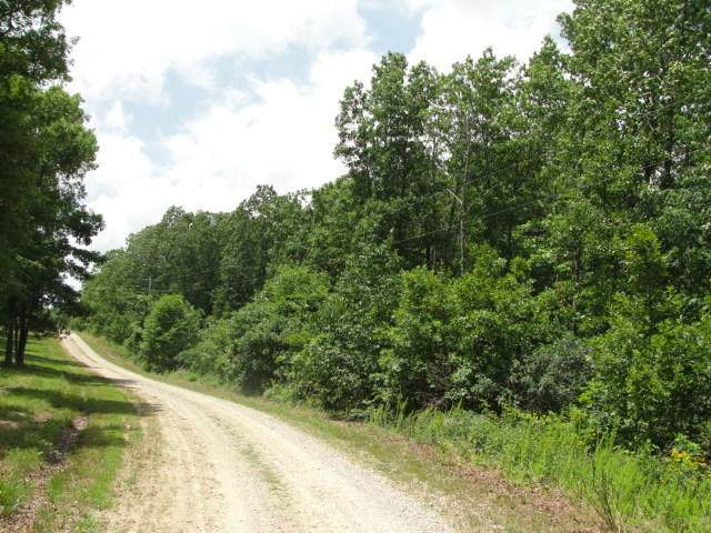 Tbd Golden Trail, Raymondville, MO 65555 (MLS #60185592) :: The Real Estate Riders