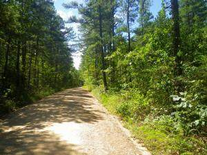 000 County Road 1660, West Plains, MO 65775 (MLS #60186169) :: United Country Real Estate
