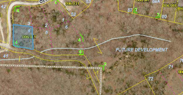 Lot 4 Oleary Dr, Kimberling City, MO 65686 (MLS #60186429) :: Tucker Real Estate Group | EXP Realty