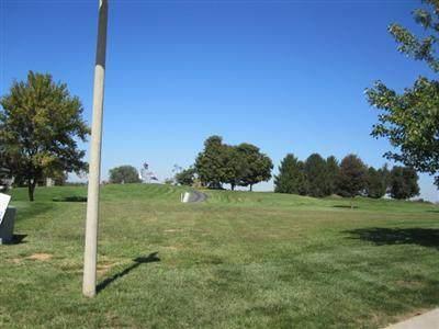 3991 E Villa Way, Springfield, MO 65809 (MLS #60186604) :: Tucker Real Estate Group | EXP Realty