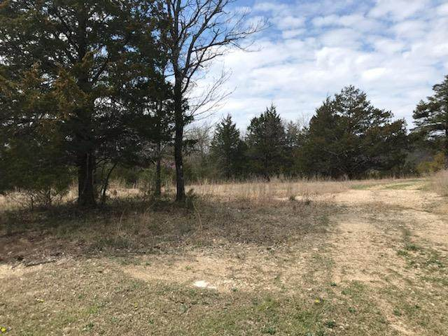 Lot 102 Forest Lake Drive, Branson West, MO 65737 (MLS #60187028) :: Team Real Estate - Springfield