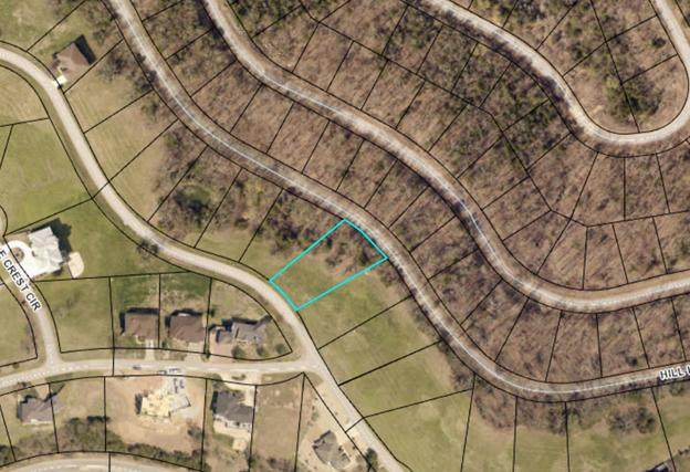 Lot 58 Eagle Crest, Hollister, MO 65672 (MLS #60187285) :: Winans - Lee Team | Keller Williams Tri-Lakes