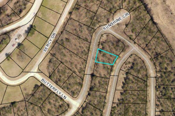 Lot 321 Samara Dr, Hollister, MO 65672 (MLS #60187286) :: Winans - Lee Team | Keller Williams Tri-Lakes