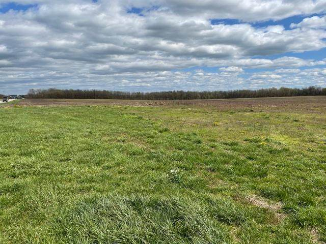 000 St Highway 14 West Tract A, Billings, MO 65610 (MLS #60188084) :: The Real Estate Riders