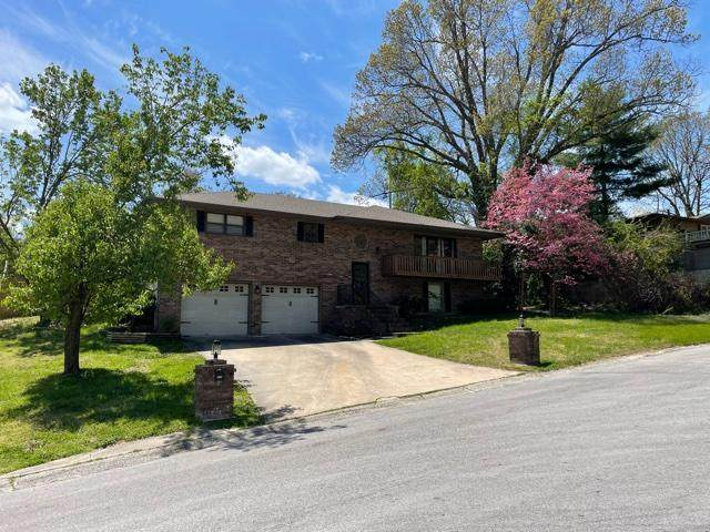 925 Canyon Drive, Neosho, MO 64850 (MLS #60188685) :: Team Real Estate - Springfield