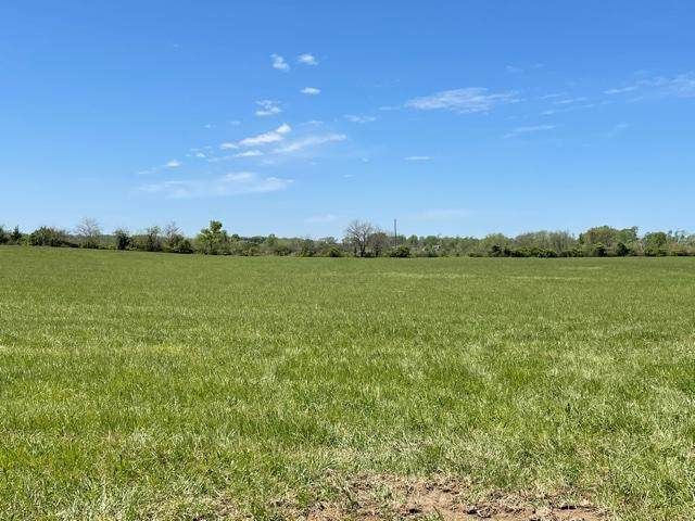 Tract 2 Eagles Roost Drive, Mountain Grove, MO 65711 (MLS #60190018) :: Tucker Real Estate Group   EXP Realty
